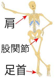 肩関節股関節足首